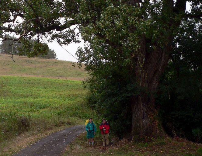 Vía Tolosana, Camino de Anoye, 23-8-2007